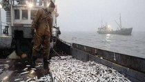 Чем российские порты отпугивают рыбаков?