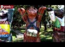 Медведи окружили Александровский сад