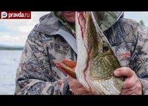 57 килограммов мечты Лукашенко