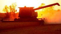 Российский трактор вышел в отрыв