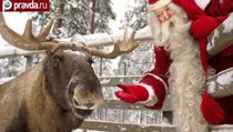 Тайна красного носа оленя Санты-Клауса раскрыта