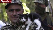Юго-восток Украины: война без правил