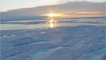 В чем сила Арктики?