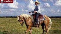 Техас пойдет по пути Крыма?