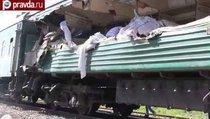 Железнодорожная авария в Подмосковье унесла 5 жизней
