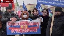Миллион за Кадырова: Грозный вышел на митинг
