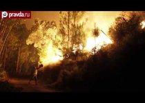 Португалия борется с лесными пожарами
