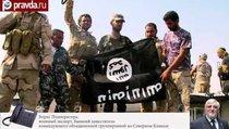 """""""Исламское государство"""" прикрывается беженцами?"""