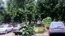 18+ Луганск 02 06 2014. После авиаудара (1 из 6)