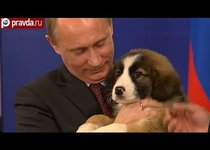 Путин заслужил мир