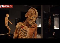 Тайны человеческого тела открыли Москве