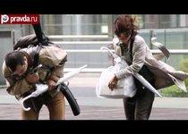Япония попала под удар стихии