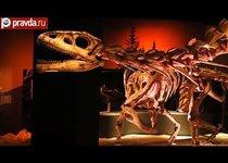 Тайны динозавров раскроют в Сингапуре