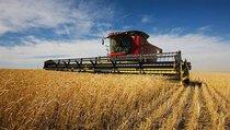 Сельскому хозяйству подарили новую жизнь?