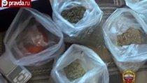 Полиция ликвидировала семейный подряд наркоторговцев