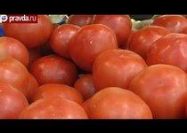 ГМО возьмут под контроль