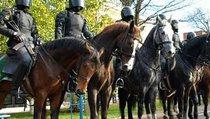 Полиция: Всегда на коне
