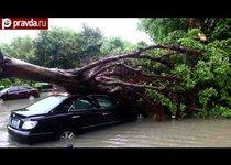 Тайфун в Китае разрушил тысячи домов
