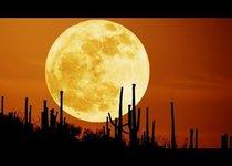 Какие тайны хранит Луна?
