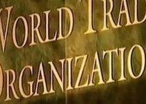 Евгений Фёдоров: почему я голосовал за ВТО?