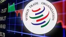 ВТО: двигатель или тормоз мировой торговли?