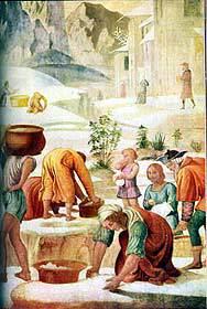 """Феномен библейской """"манны небесной"""""""